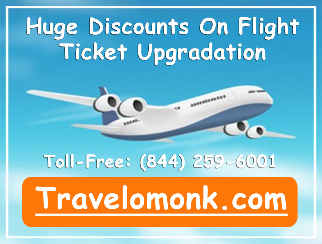 Flight Search Engines