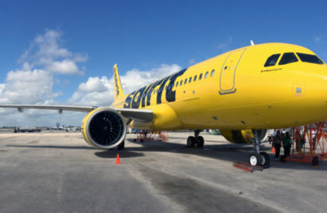 Spirit Airlines Pet Policy, Fee, And Guidelines For 2021
